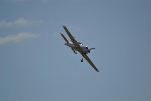 Blackbushe2015 165 (Large)
